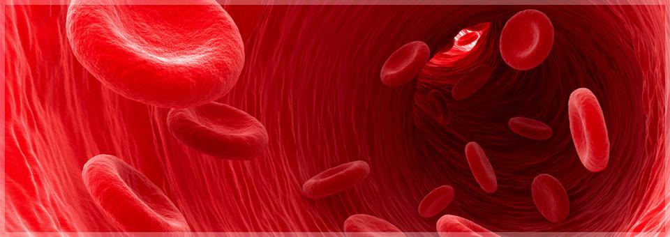 Eigenblut - Impuls für das Immunsystem